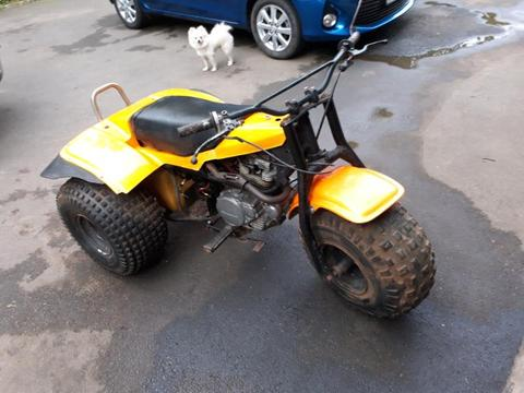 Kawasaki trike 250cc