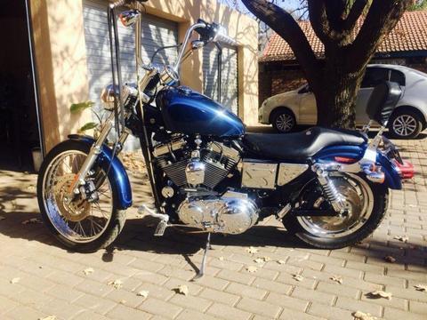 Harley Davidson 1200 xl custom Sportster