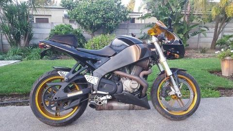 Buell XB12R For Sale